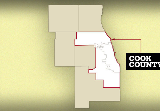 Ethics officials are petitioning the Cook County Circuit Court to enforce a subpoena seeking information on potential profits obtained by Commissioner Larry Rogers from his law firm's lawsuits against Cook County government.
